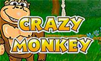 Емулятор Божевільна Мавпа